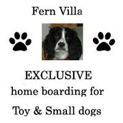 Fern Villa,  Fully licensed Dog home boarding in Rotherham