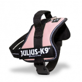 The Best Dog Harnesses UK